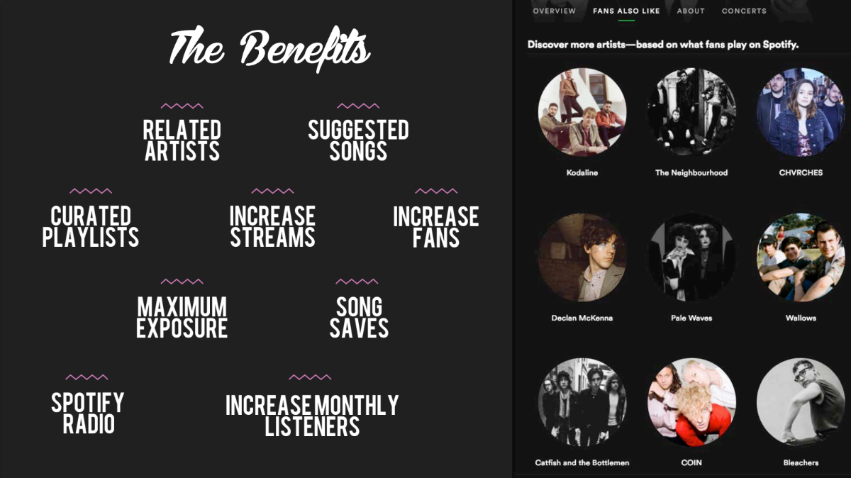 spotify growth program benefits indiehitmaker
